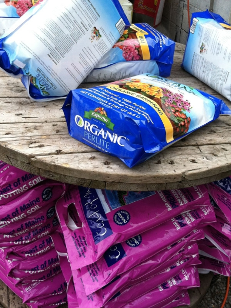 somerville-spring-organic-perlite-rickys-union-square1